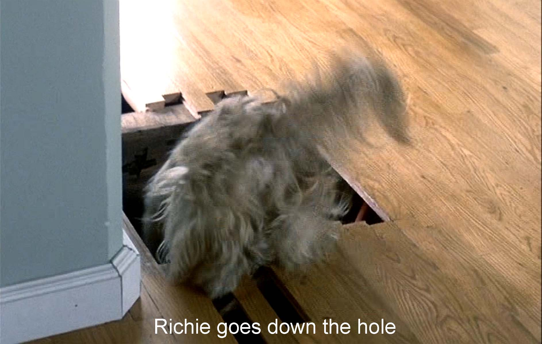 Richie goes down the hole